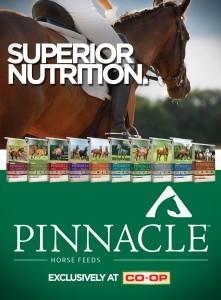 pinnacle_ad_2015_coop
