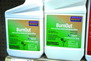 Bodine Burnout weed control